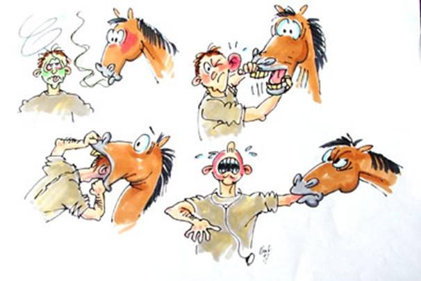 Vorlesung Zahnkrankheiten beim Pferd